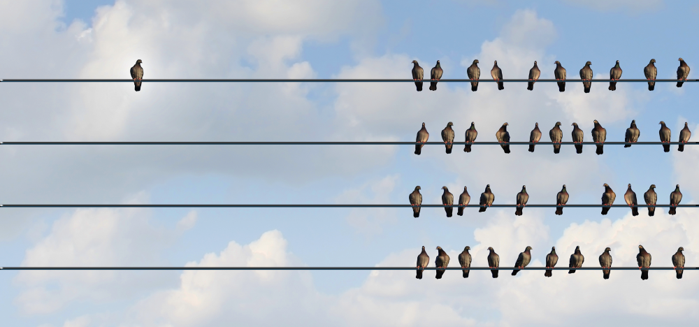Segmentation Versus Personalization: What's the Difference?